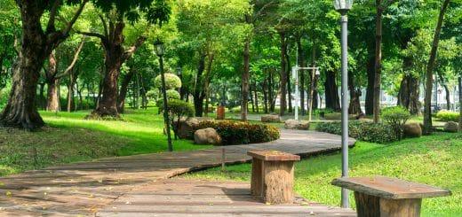 Millet Bahçeleri Projesi Nedir? Detayları ve Son Durum