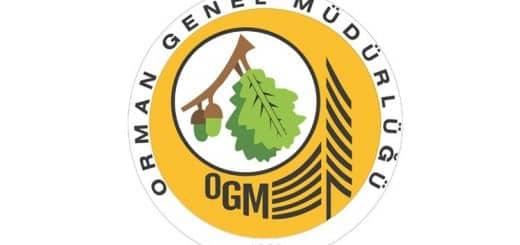 Orman Genel Müdürlüğü Birim Fiyatları 2019